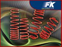 Tieferlegungsfedern Ford Fusion (JU2) VA/HA ca. 25 mm